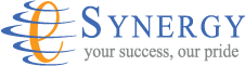 e-Synergy Co., Ltd.